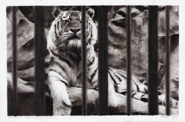 Robert Longo - Study for Tiger on the Rocks